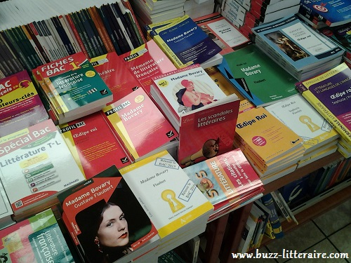 Etalage au rayon parascolaire/bac français du libraire Gibert jeunes où Madame Bovary règne...