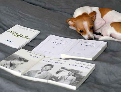 nouveau roman blanchot beckett vus par solange te parle